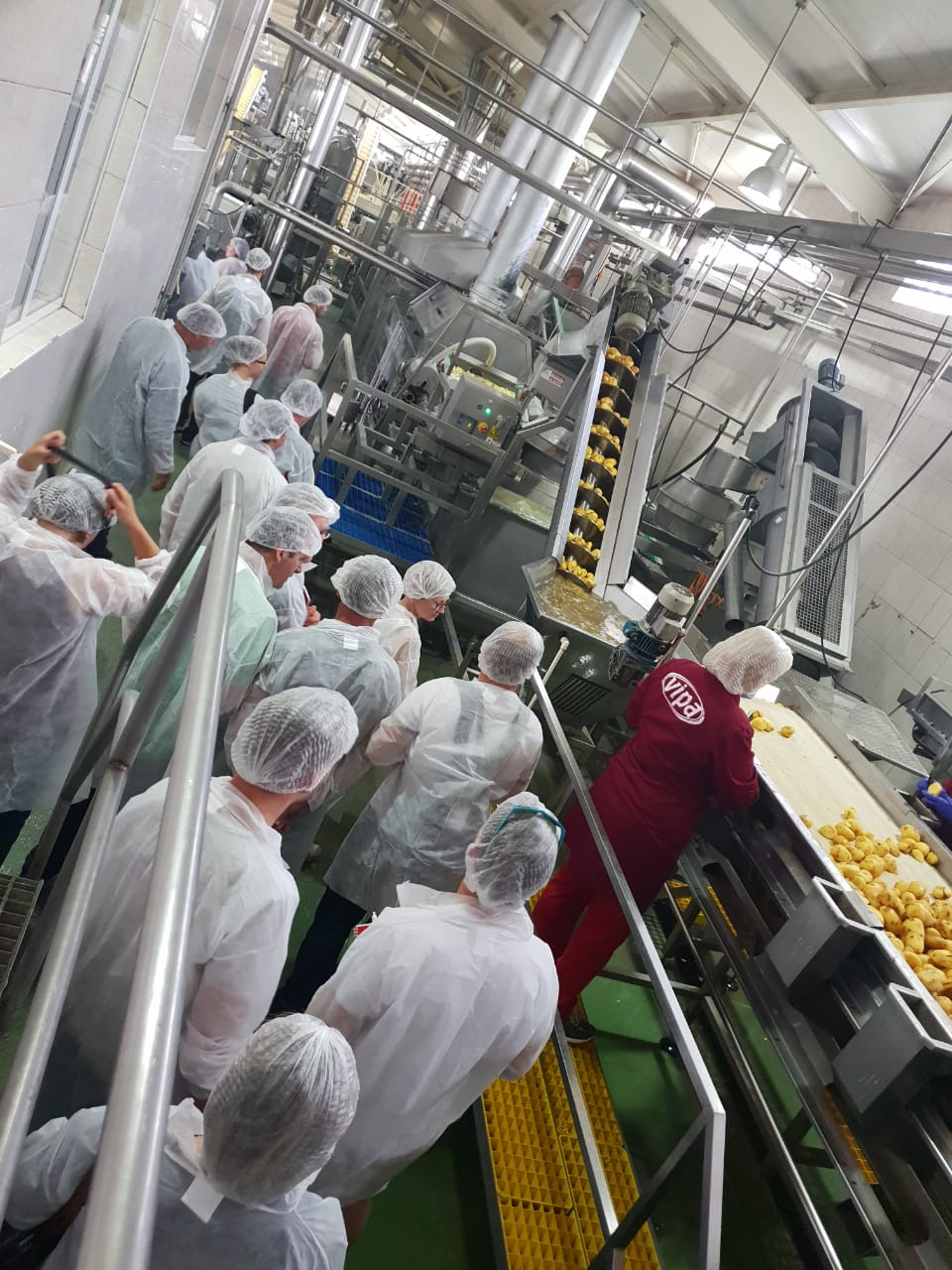 balkandestination business trip factory vipachips kosovo